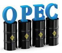 """""""أوبك"""" تدعو لتعاون جميع الدول المنتجة والمستهلكة للنفط للحفاظ على استقرار السوق"""