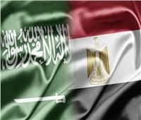 الكهرباء السعودية: مركز إقليمي للربط بين آسيا وأفريقيا بالتعاون مع مصر