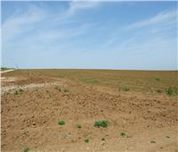 «الزراعة» توجه رسالة للمنتفعين بمزادات الأراضي في شمال سيناء