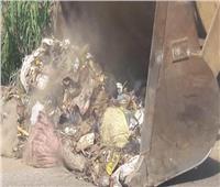 المنوفية تشن حملات مكثفة لرفع تراكمات القمامة بالطرق والميادين