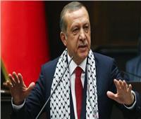 أردوغان: سننفذ خطتنا في شمال شرق سوريا إن لم نسيطر على المنطقة الآمنة
