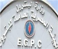 وزير البترول: الانتهاء من المسح السيزمي لـ1800 كم غرب كلابشة