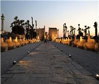 الآثار: افتتاح «معرض أثري» و«مقبرتين» بالأقصر 7 سبتمبر
