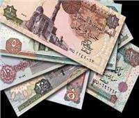 البنك المركزي يوضح اتجاهات ودائع القطاع العائلي بالجهاز المصرفي