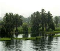 حكايات| قرية «سحرة موسى».. أكبر جزيرة نيلية على أرض مصر