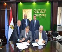 بروتوكول تعاون بين «جامعة الإسكندرية» و«تعليم الكبار» لمحو الأمية