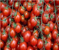 «نقابة الفلاحين» توضح سبب ارتفاع أسعار الطماطم