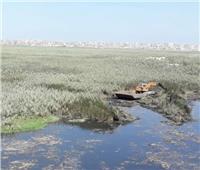 خطة زمنية لإعادة بحيرة مريوط لسابق عهدها