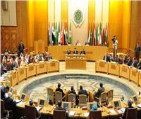 وزراء الخارجية العرب يعلنون دعمهم لموقف مصر بملف سد النهضة