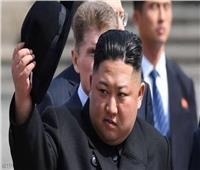وكالة: كوريا الشمالية اختبرت راجمة صواريخ عملاقة متعددة الفوهات