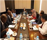 وزيرة البيئة تناقش مع ممثلة النيباد الاستعداد لقمة المناخ في الأمم المتحدة