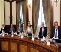 الوزراء: إنشاء مؤسسة «جلوبال»بالعاصمة الإدارية الجديدة