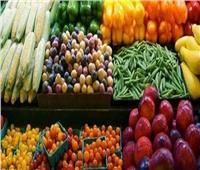 الحكومة تنفي تراجع الصادرات الزراعية خلال النصف الأول من العام الجاري