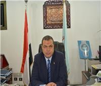 القوى العاملة: اعتماد 1371 عقد عمل وشهادات استمرارية للمصريين بالإمارات