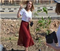 غرس شجرة الصداقة المصرية الألمانية في الأقصر