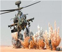 المصريون بالخارج: المؤسسة العسكرية حصن الدولة