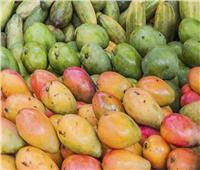 أسعار وأنواع المانجو في سوق العبور اليوم  16 سبتمبر