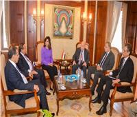 «الهجرة» تناقش تأسيس صندوق لاستثمارات المصريين بالخارج