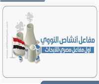 إنفوجراف | «أنشاص» أول مفاعل مصري للأبحاث