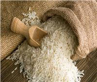 نقابة الفلاحين: لا زيادة في أسعار الأرز وتحقيق الاكتفاء الذاتي قريبا