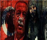 «راعي الإرهاب بالمنطقة».. «الخارجية»: أردوغان يكن حقدا وضغينة تجاه مصر وشعبها