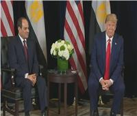 شيوخ الدبلوماسية: حديث ترامب عن دور السيسي رسالة دعم لمصر