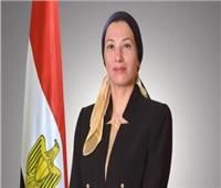 «البيئة والهجرة» تكثفان الجهود لدعم المصريين بالخارج في الحفاظ على البيئة