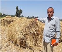 البحيرة تخصص 27 موقعًا لتجميع وكبس وتدوير قش الأرز