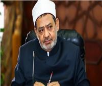 الإمام الأكبر يعود إلى القاهرة بعد رحلة علاج في فرنسا
