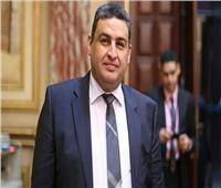 النائب محمد العقاد يعلن نزوله تظاهرات «حب مصر» للرد على دعوات التخريب