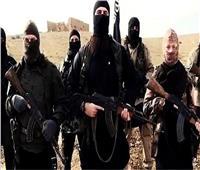 الجيش الأمريكي يعلن مقتل 17 مسلحاً من عناصر «داعش» في ليبيا