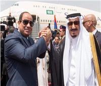السعوديةتعلن تأييدها للجهود التي تبذلها مصر لمكافحة الإرهاب