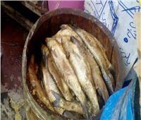 الصحة: إعدام 56 طن أسماك مملحة غير صالحة للاستهلاك الآدمي بالمحافظات