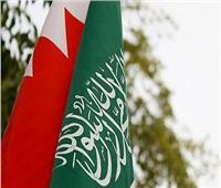 فيديو| تقرير يكشف تفاصيل دعم السعودية والبحرين لمصر في مواجهتها للإرهاب