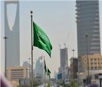 الربيعة: السعودية قدمت لليمن 14.5 مليار دولار