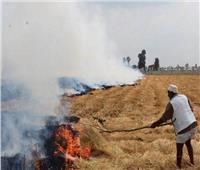 بالأقمار الصناعية.. مصر ترصد مخالفات حرق قش الأرز