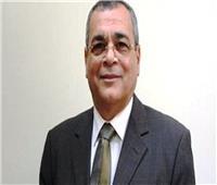 خاص|نائب هيئة البترول الأسبق: قرار إعادة تسعير الغاز مشجع لـ«الصناعة»
