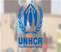 مفوضية اللاجئين: عودة 600 لاجئ بوروندي في تنزانيا طوعيا إلى وطنهم