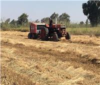 البيئة:  جمع 146 ألف طن «قش أرز» لمواجهة السحابة السوداء