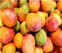 «الزراعة» تعلن فتح أسواق جنوب أفريقيا أمام المانجو المصرية