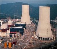 مؤتمر صحفي لعرض آخر تطورات محطة الضبعة النووية.. غدا