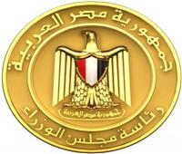 بأمر الحكومة.. وزير المالية يضمن «القابضة للقطن»