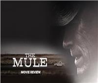 الأربعاء.. «the mule» بمركز الثقافة السينمائية