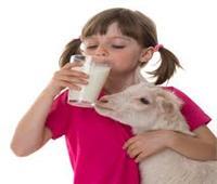تناول كوب حليب الماعز يوميا يساعد في الهضم والنمو البدني