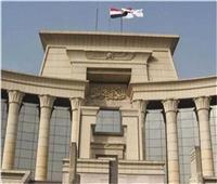 «مرعي»: المحكمة الدستورية الوحيدة المختصة بالفصل في دستورية القوانين