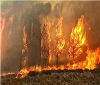 الإمارات تحذر جاليتها من «حرائق لبنان» وتعلن أرقام للطوارئ