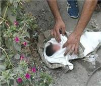 العثور على جثة رضيع متحللة قرب ترعة فرشوط في قنا