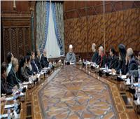 شيخ الأزهر يستقبل اللجنة التنفيذية لمجلس كنائس مصر
