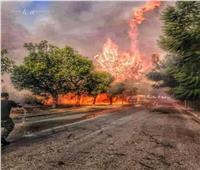 فيديو| راغب علامة عن حرائق لبنان: «مفتعلة»