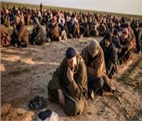 سياسي: هناك ضغوط غربية لنقل معتقلي «داعش» إلى السجون العراقية